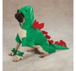 Casual Canine ZW4223 20 43 Dogosaurus Costume, Large, Green