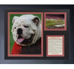 Georgia Bulldogs – Uga 11″ x 14″ Framed Photo Collage by Legends Never Die, Inc.